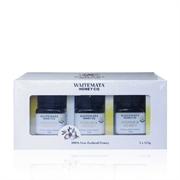紐西蘭WAITEMATA UMF15 麥盧卡蜂蜜禮盒裝 (125g x3)